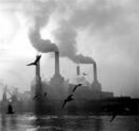 Problemas Ambientais Atuais | Temos Consciência da Influência dos Problemas Ambientais em Nossa Vida?