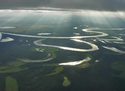 Floresta Nacional de Balata-Tufari | Amazonas