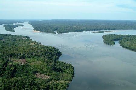 Floresta Nacional de Tapajós | Pará