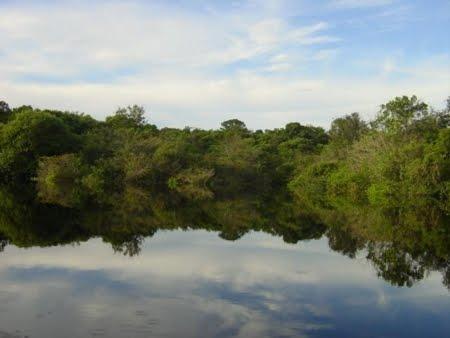 Floresta Nacional de Tapirapé - Aquiri | Pará