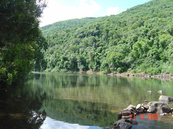Floresta Estadual do Turvo | Rio Grande do Sul