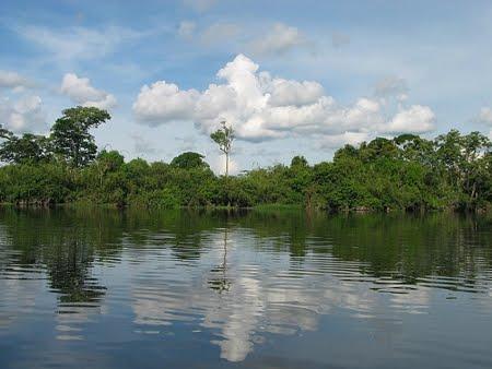 Parque Estadual de Guajará-Mirim | Rondônia