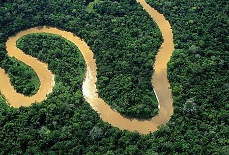 Reserva Biológica do Rio Ouro Preto | Rondônia
