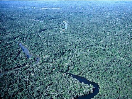 Parque Nacional do Juruena | Mato Grosso