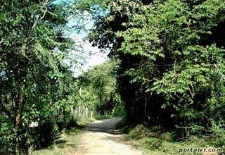 Área de Relevante Interesse Ecológico Floresta da Cicuta | Rio de Janeiro
