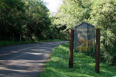 Parque Estadual Mata dos Godoy   Paraná