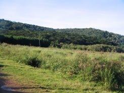 Parque Estadual de Caxambú   Paraná