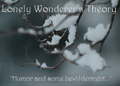 Lonely Wonderer's Theory's album, Humor and Some Bewilderment
