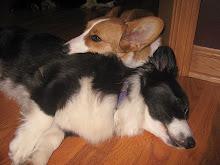 Moxie and Izzie