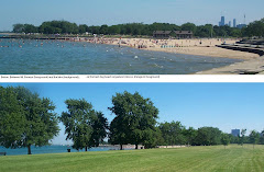 Foster Beach Chicago IL USA