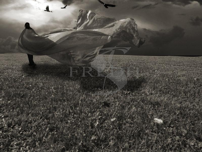 [Wind_by_Fredh.jpg]
