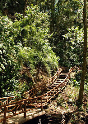 a bridge and stairs to waterfall garden in costa rica