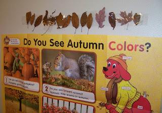 Autumn colors leaf borders