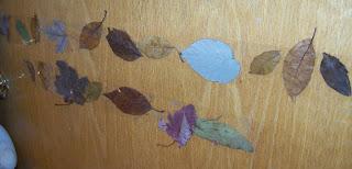 Leaf borders nature activity
