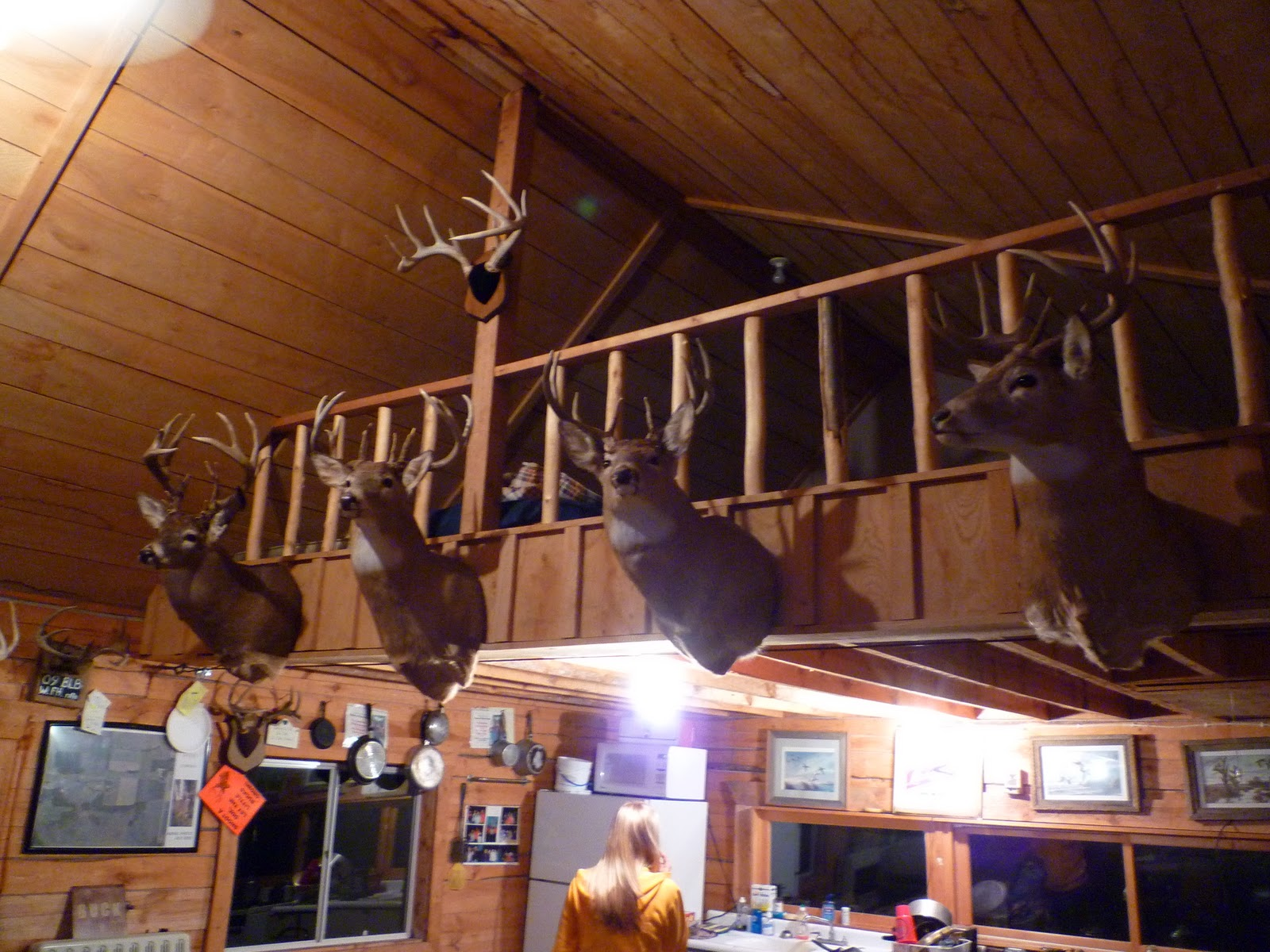 Astonishing Bow Hunting Hunting Cabin And More Trail Camera Pics Largest Home Design Picture Inspirations Pitcheantrous