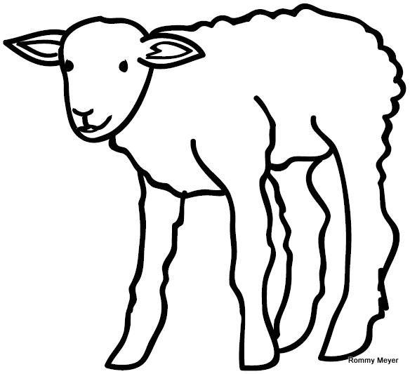 dibujos para colorear de corderos