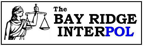 The Bay Ridge Interpol is another pro-reform blog that has been cited in news articles this summer