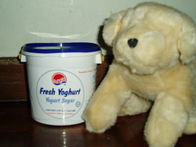 Can Dogs Have Natural Yoghurt