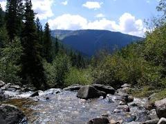 Colorado - 2006