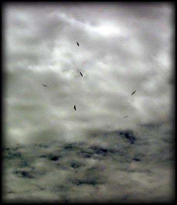 Fotografía de Hansbrinker