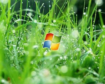 Wallpaper Terbaik Untuk Windows Xp The Beautiful Desktop Windows 7 Top Desktop No 1 400x320