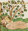 Anónimo s.XV, El árbol de Jesé