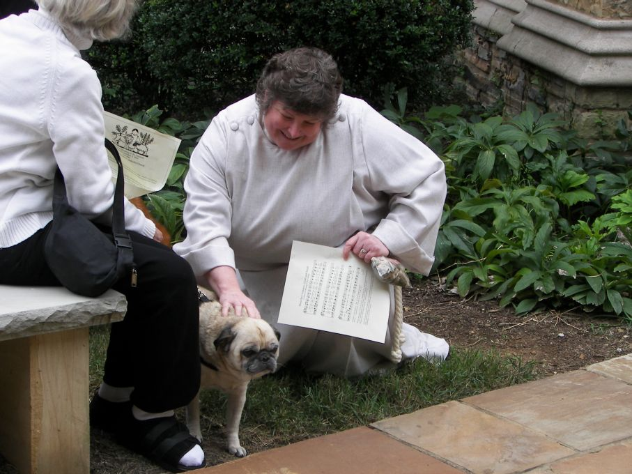 Restaurants are nice, but where do dogs (and cats) go for spiritual