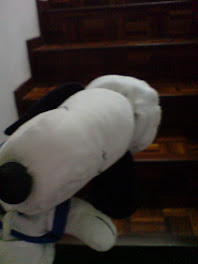 Snoopy at the stair~~