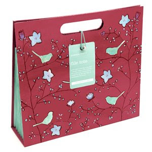 pretty file tote - for papers, not file folders