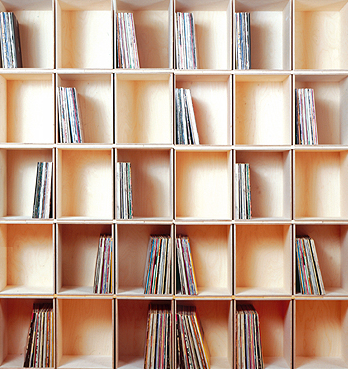 Jeris Organizing & Decluttering News: Storing the Vinyl ...