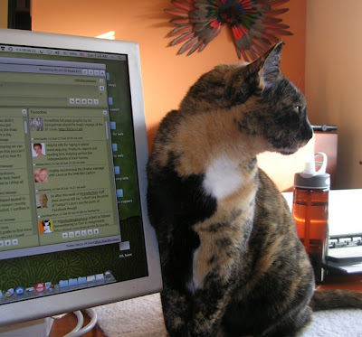 tortoiseshell cat and computer, in home office
