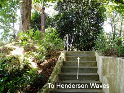 16_TrailToHendersonWaves