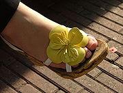 zapato de mujer tipo sandalia