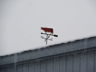 Weathervane pointing north