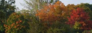 Fall starts