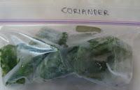 Frozen coriander cubes