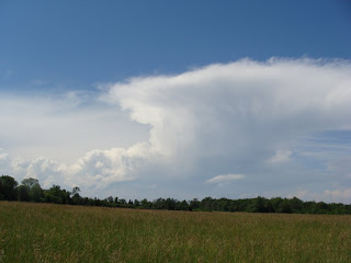 Thunder-head cloud over the hayfield