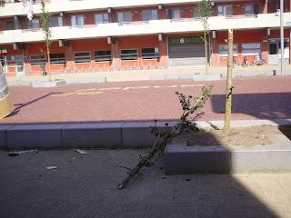 a22347a8e7 Plein-Oost lag er vanochtend bij alsof er zich een kleine oorlog heeft  afgespeeld. Op verschillende plaatsen lag ligt het plein bezaait met troep