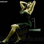 Namitha's Rocking New Photo Session ( Hot & Spicy Dressing)