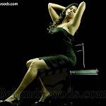 Namitha's Rocking New Photo Session ( Hot & Spicy Dressing)
