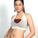 Hot & Spicy Pictures Of Sraddha Das
