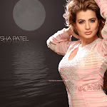 Amisha Patel Cute Pictures
