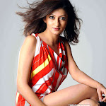Hot South Indian Model Chandrika Pics