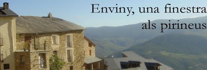 Enviny