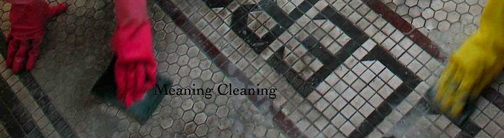 Meaning Cleaning