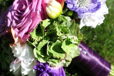 Kris+Bouquet p - Kris- August 8th 2010