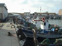 Flota marisquera de la Atunara
