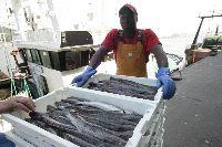 Trabajador del Mar