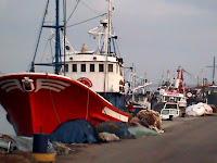 Pesquero Algecireño
