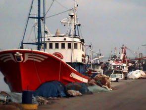 Dolor en Algeciras en solidaridad con sus compañeros de Barbate